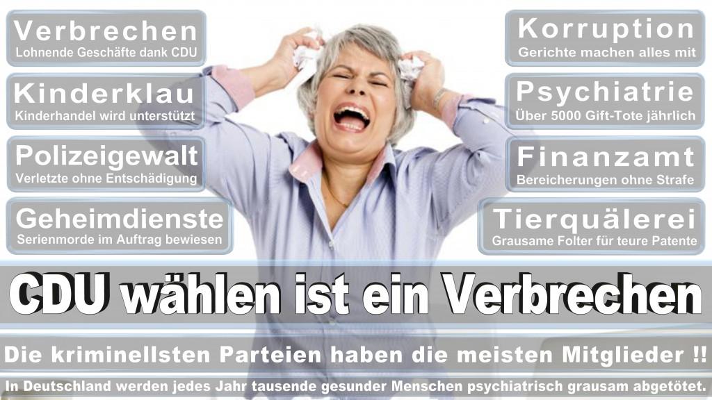 Landtagswahl Baden-Württemberg 2016, CDU, SPD, Landtagswahl Baden-Württemberg 2016,Landtagswahl-Baden-Württemberg-2016 (440) Landtagswahl Baden-Württemberg 2016