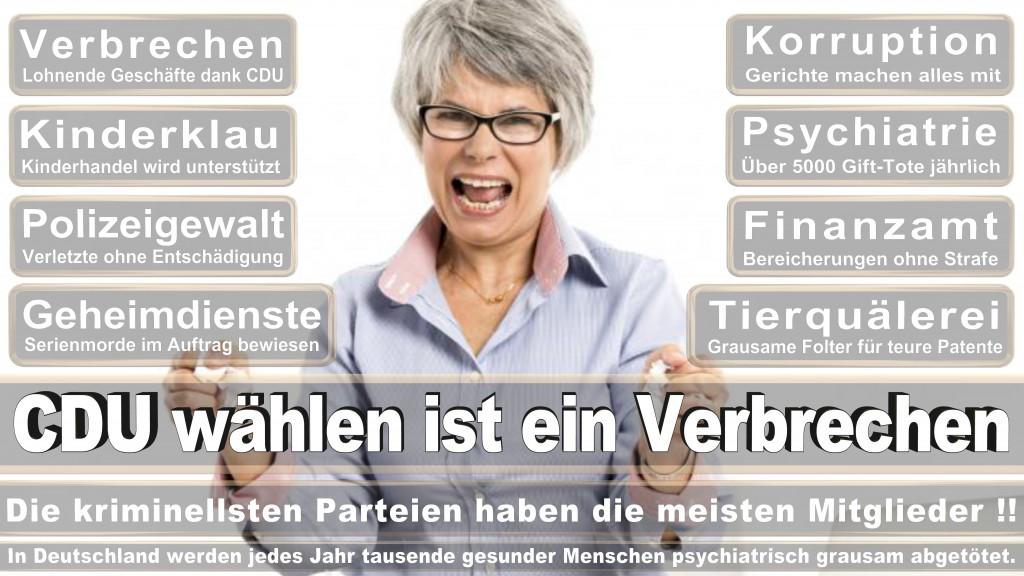 Landtagswahl Baden-Württemberg 2016, CDU, SPD, Landtagswahl Baden-Württemberg 2016,Landtagswahl-Baden-Württemberg-2016 (444) Landtagswahl Baden-Württemberg 2016