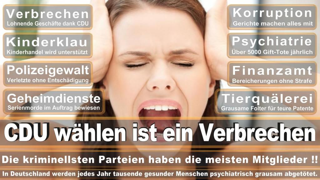 Landtagswahl Baden-Württemberg 2016, CDU, SPD, Landtagswahl Baden-Württemberg 2016,Landtagswahl-Baden-Württemberg-2016 (446) Landtagswahl Baden-Württemberg 2016