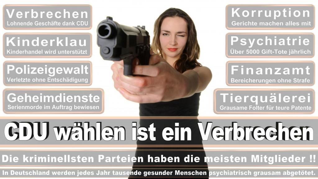 Landtagswahl Baden-Württemberg 2016, CDU, SPD, Landtagswahl Baden-Württemberg 2016,Landtagswahl-Baden-Württemberg-2016 (452) Landtagswahl Baden-Württemberg 2016