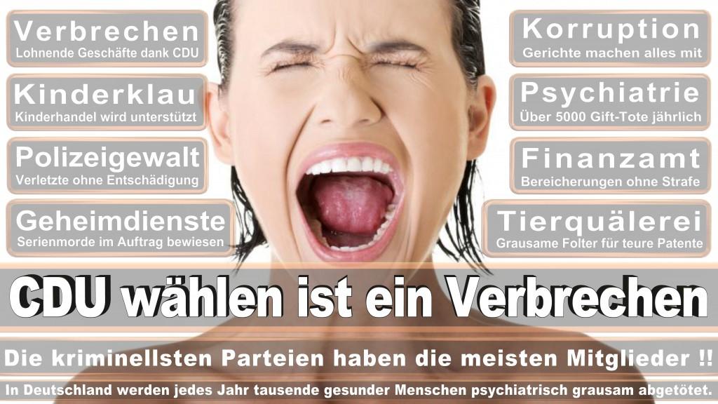 Landtagswahl Baden-Württemberg 2016, CDU, SPD, Landtagswahl Baden-Württemberg 2016,Landtagswahl-Baden-Württemberg-2016 (454) Landtagswahl Baden-Württemberg 2016