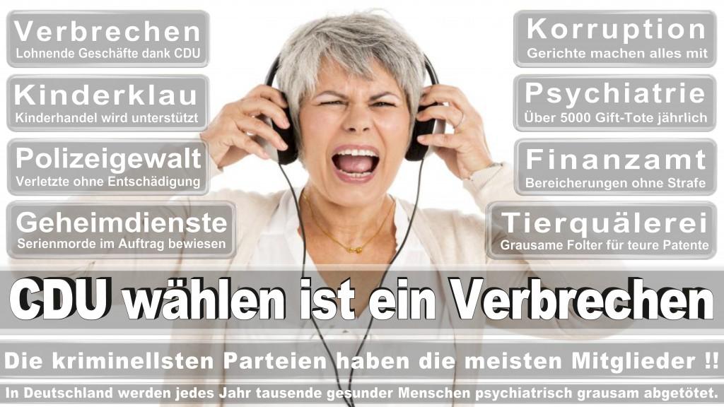 Landtagswahl Baden-Württemberg 2016, CDU, SPD, Landtagswahl Baden-Württemberg 2016,Landtagswahl-Baden-Württemberg-2016 (458) Landtagswahl Baden-Württemberg 2016