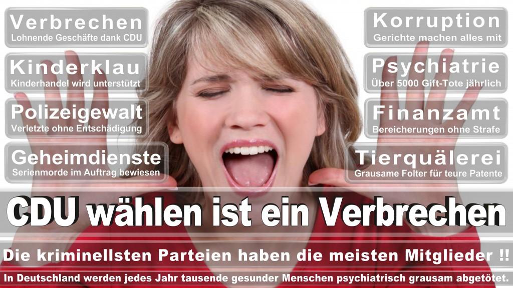 Landtagswahl Baden-Württemberg 2016, CDU, SPD, Landtagswahl Baden-Württemberg 2016,Landtagswahl-Baden-Württemberg-2016 (460) Landtagswahl Baden-Württemberg 2016