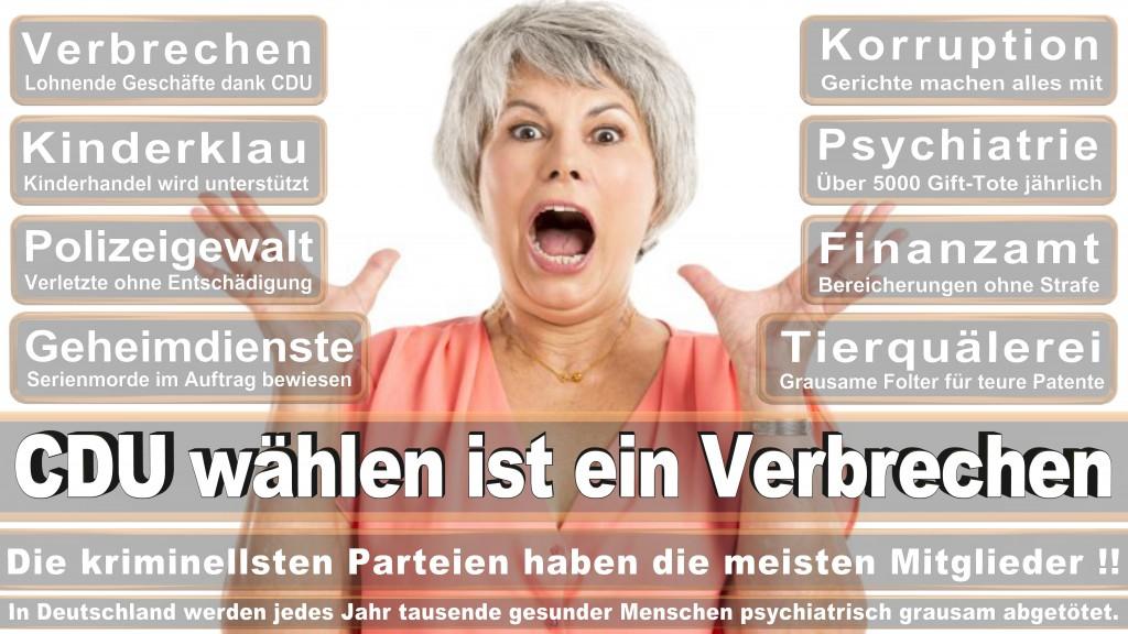 Landtagswahl Baden-Württemberg 2016, CDU, SPD, Landtagswahl Baden-Württemberg 2016,Landtagswahl-Baden-Württemberg-2016 (462) Landtagswahl Baden-Württemberg 2016