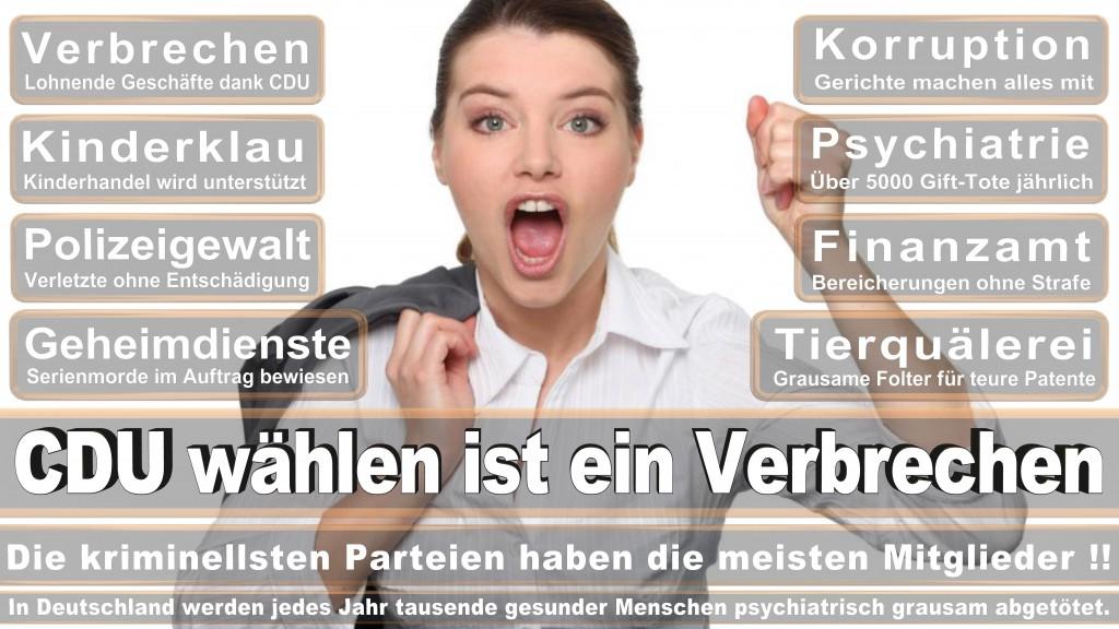 Landtagswahl Baden-Württemberg 2016, CDU, SPD, Landtagswahl Baden-Württemberg 2016,Landtagswahl-Baden-Württemberg-2016 (464) Landtagswahl Baden-Württemberg 2016