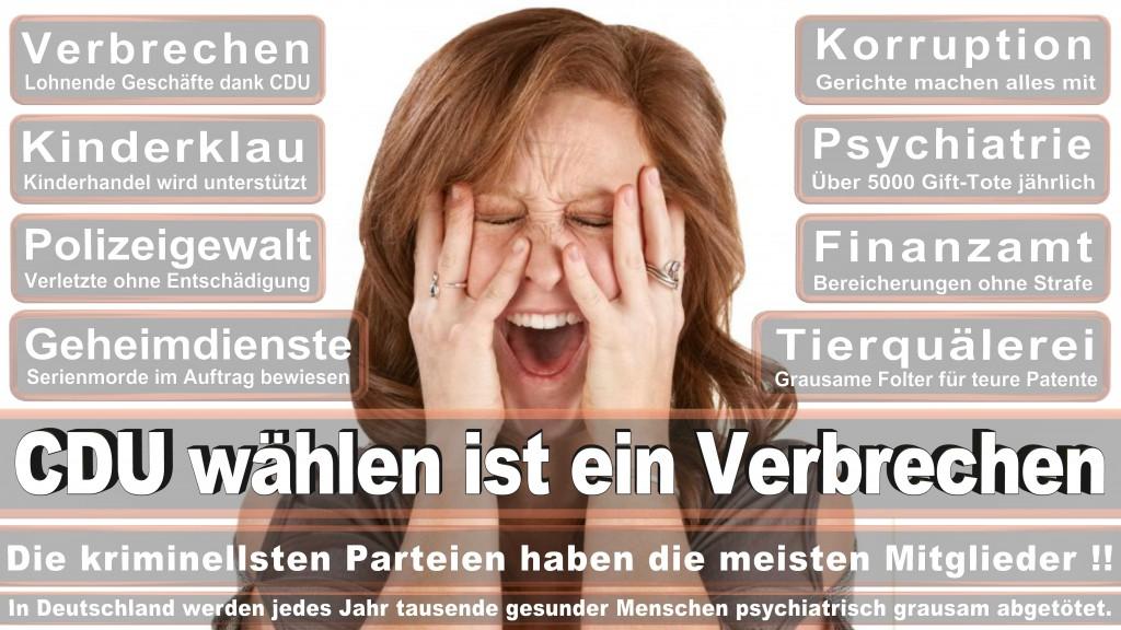 Landtagswahl Baden-Württemberg 2016, CDU, SPD, Landtagswahl Baden-Württemberg 2016,Landtagswahl-Baden-Württemberg-2016 (466) Landtagswahl Baden-Württemberg 2016