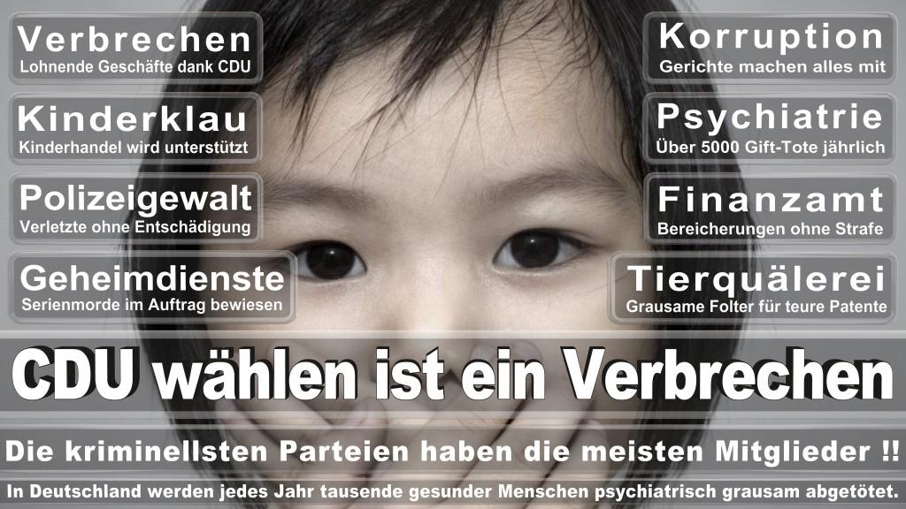 Landtagswahl Baden-Württemberg 2016, CDU, SPD, Landtagswahl Baden-Württemberg 2016,Landtagswahl-Baden-Württemberg-2016 (468) Landtagswahl Baden-Württemberg 2016