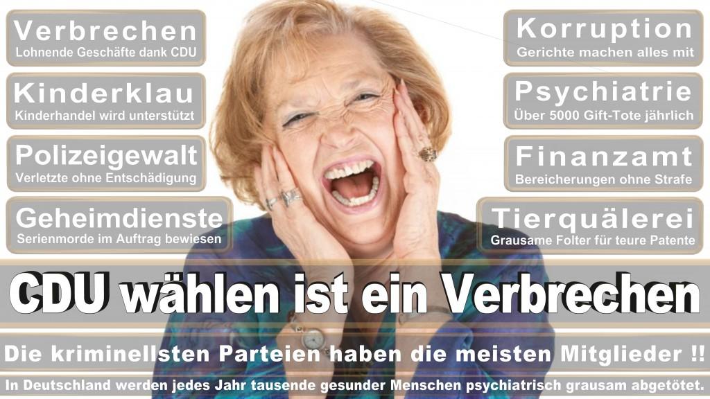 Landtagswahl Baden-Württemberg 2016, CDU, SPD, Landtagswahl Baden-Württemberg 2016,Landtagswahl-Baden-Württemberg-2016 (470) Landtagswahl Baden-Württemberg 2016