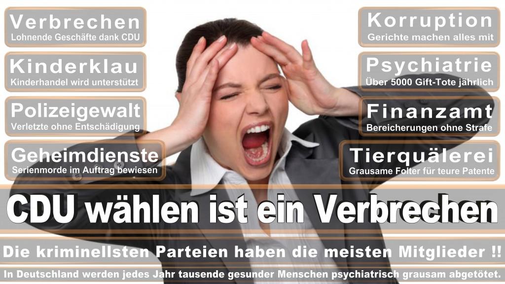 Landtagswahl Baden-Württemberg 2016, CDU, SPD, Landtagswahl Baden-Württemberg 2016,Landtagswahl-Baden-Württemberg-2016 (474) Landtagswahl Baden-Württemberg 2016