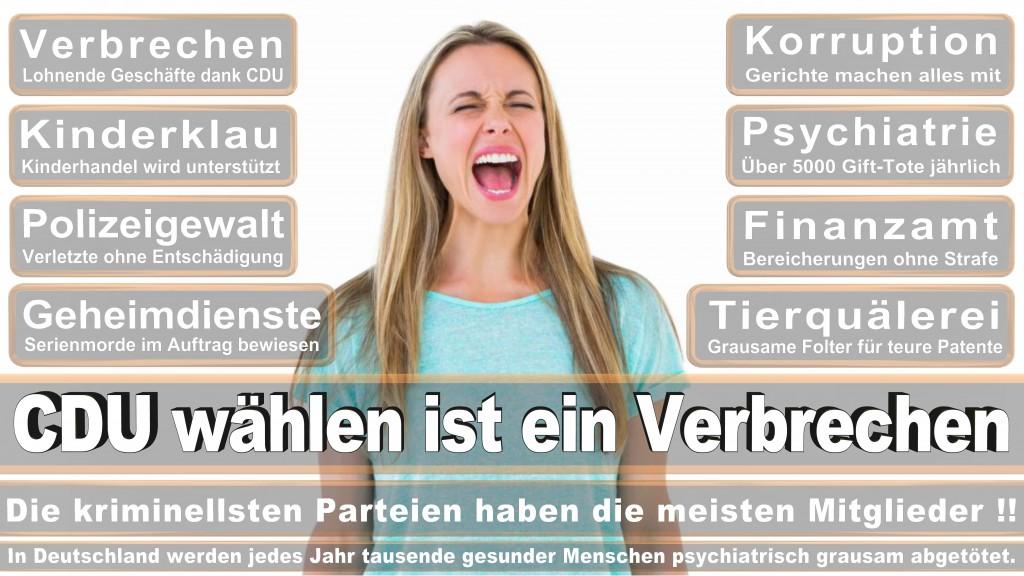 Landtagswahl Baden-Württemberg 2016, CDU, SPD, Landtagswahl Baden-Württemberg 2016,Landtagswahl-Baden-Württemberg-2016 (477) Landtagswahl Baden-Württemberg 2016