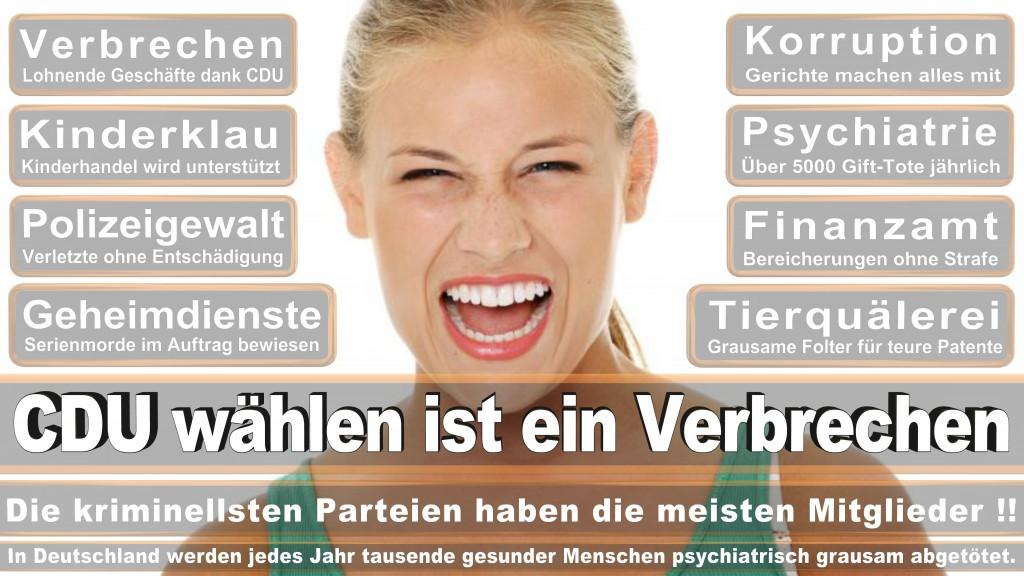 Landtagswahl Baden-Württemberg 2016, CDU, SPD, Landtagswahl Baden-Württemberg 2016,Landtagswahl-Baden-Württemberg-2016 (479) Landtagswahl Baden-Württemberg 2016