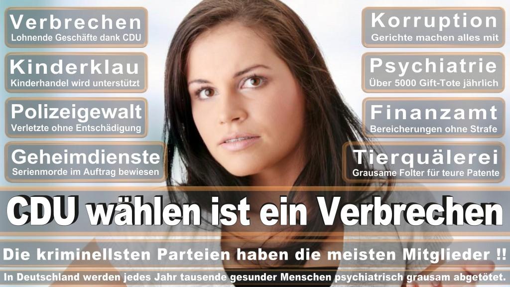 Landtagswahl Baden-Württemberg 2016, CDU, SPD, Landtagswahl Baden-Württemberg 2016,Landtagswahl-Baden-Württemberg-2016 (481) Landtagswahl Baden-Württemberg 2016