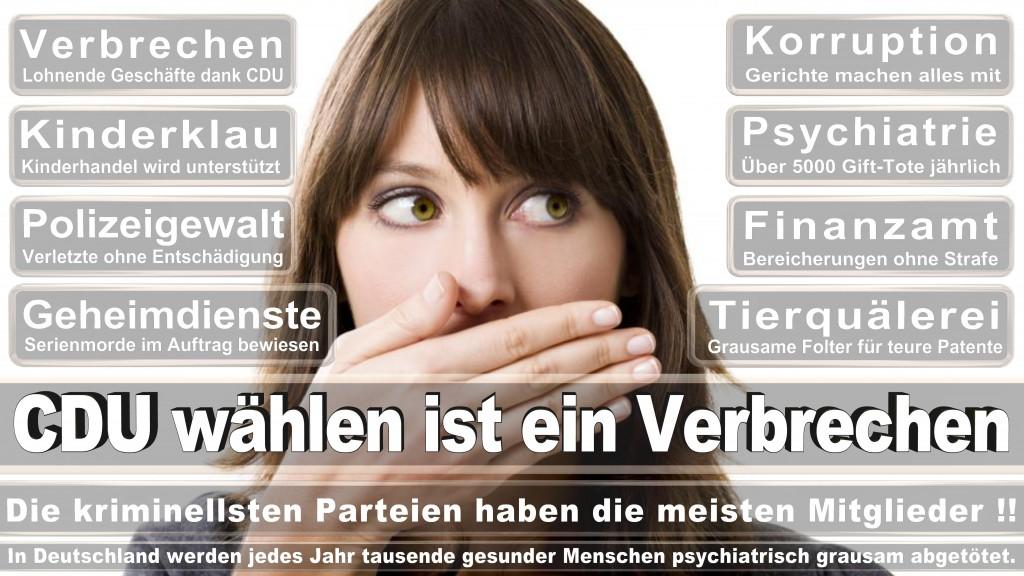 Landtagswahl Baden-Württemberg 2016, CDU, SPD, Landtagswahl Baden-Württemberg 2016,Landtagswahl-Baden-Württemberg-2016 (485) Landtagswahl Baden-Württemberg 2016