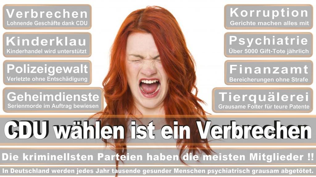 Landtagswahl Baden-Württemberg 2016, CDU, SPD, Landtagswahl Baden-Württemberg 2016,Landtagswahl-Baden-Württemberg-2016 (487) Landtagswahl Baden-Württemberg 2016