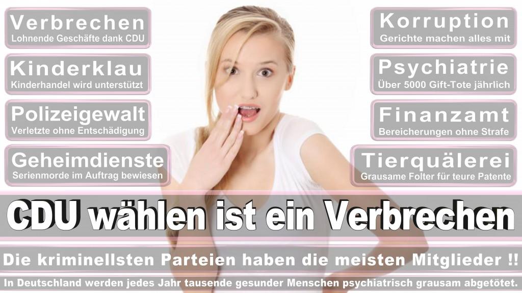 Landtagswahl Baden-Württemberg 2016, CDU, SPD, Landtagswahl Baden-Württemberg 2016,Landtagswahl-Baden-Württemberg-2016 (489) Landtagswahl Baden-Württemberg 2016