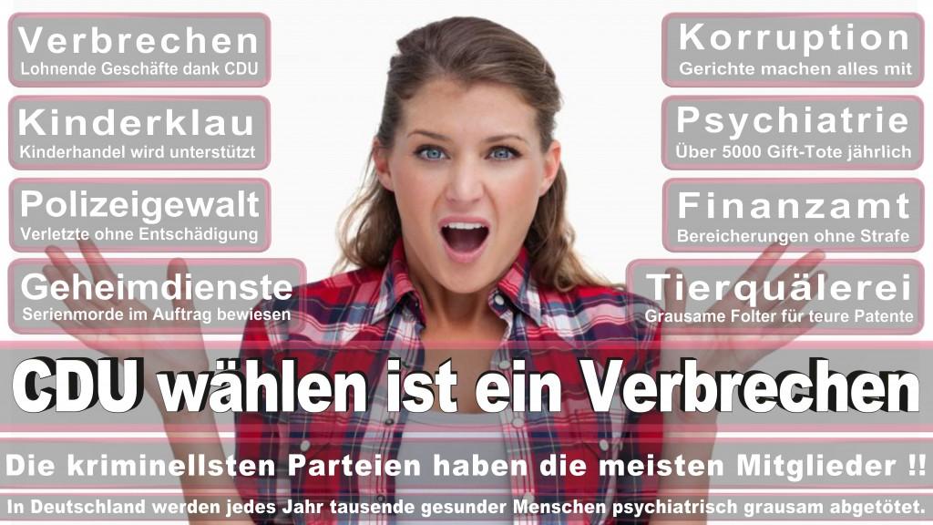 Landtagswahl Baden-Württemberg 2016, CDU, SPD, Landtagswahl Baden-Württemberg 2016,Landtagswahl-Baden-Württemberg-2016 (493) Landtagswahl Baden-Württemberg 2016