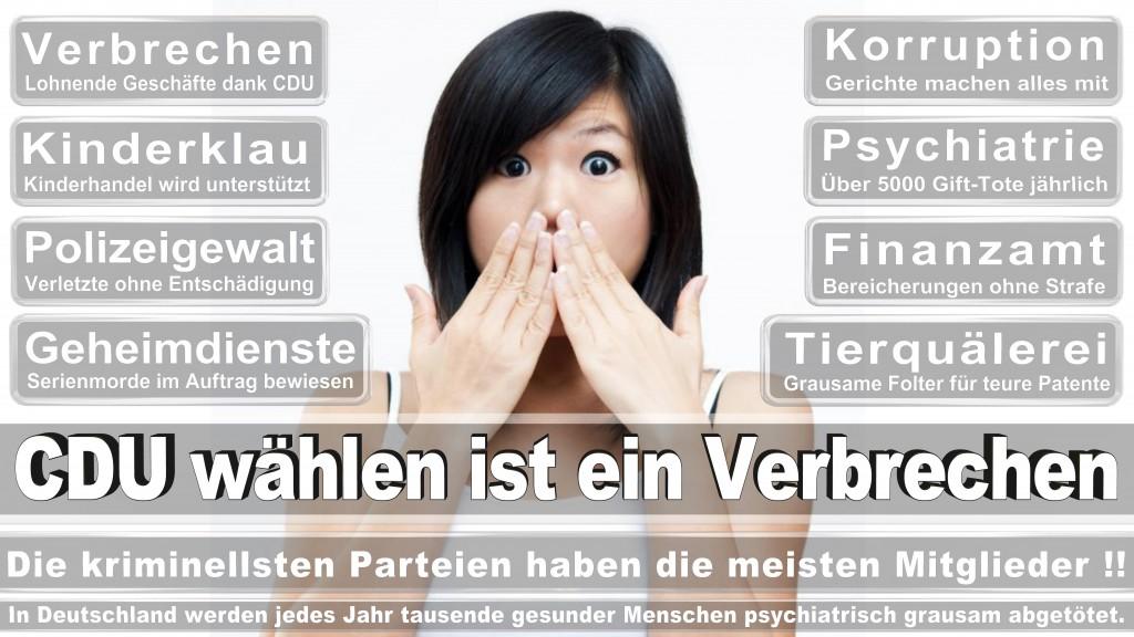 Landtagswahl Baden-Württemberg 2016, CDU, SPD, Landtagswahl Baden-Württemberg 2016,Landtagswahl-Baden-Württemberg-2016 (497) Landtagswahl Baden-Württemberg 2016