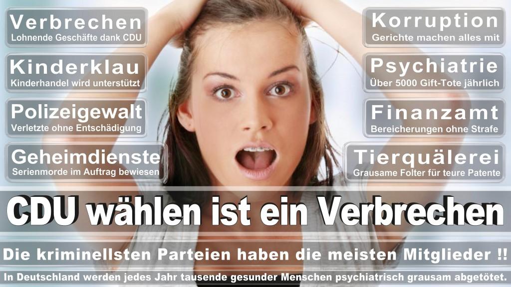Landtagswahl Baden-Württemberg 2016, CDU, SPD, Landtagswahl Baden-Württemberg 2016,Landtagswahl-Baden-Württemberg-2016 (499) Landtagswahl Baden-Württemberg 2016