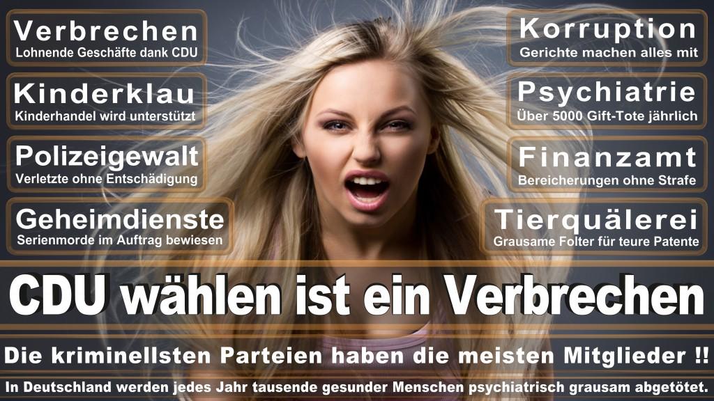 Landtagswahl Baden-Württemberg 2016, CDU, SPD, Landtagswahl Baden-Württemberg 2016,Landtagswahl-Baden-Württemberg-2016 (503) Landtagswahl Baden-Württemberg 2016