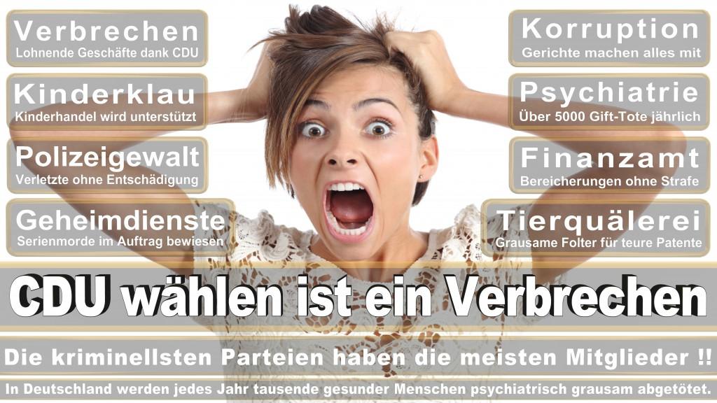 Landtagswahl Baden-Württemberg 2016, CDU, SPD, Landtagswahl Baden-Württemberg 2016,Landtagswahl-Baden-Württemberg-2016 (505) Landtagswahl Baden-Württemberg 2016