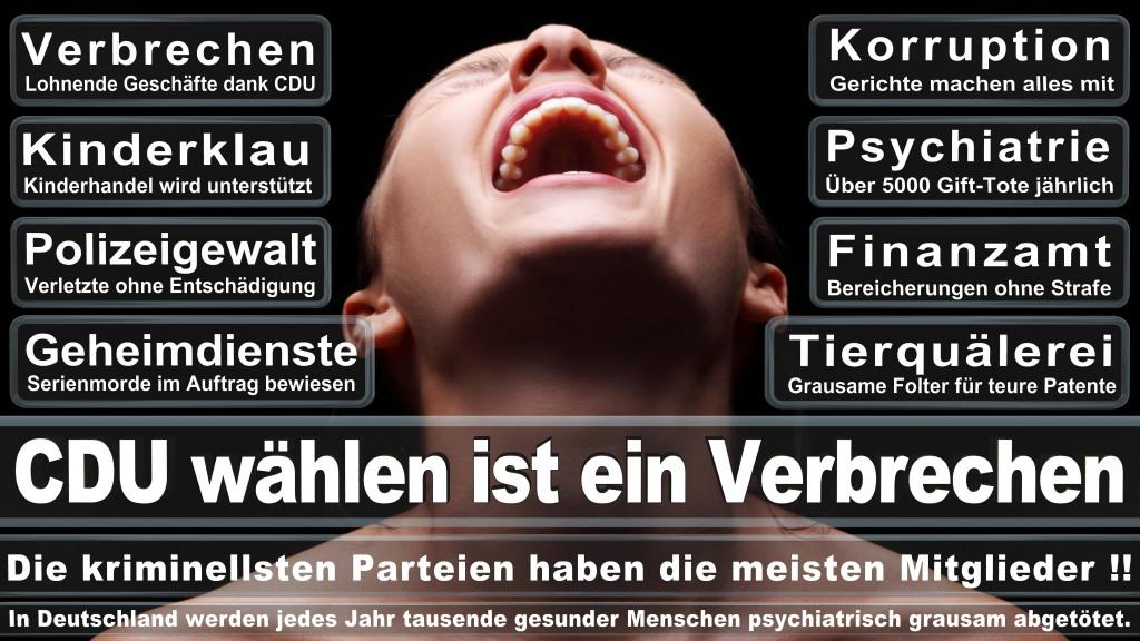 Landtagswahl Baden-Württemberg 2016, CDU, SPD, Landtagswahl Baden-Württemberg 2016,Landtagswahl-Baden-Württemberg-2016 (507) Landtagswahl Baden-Württemberg 2016