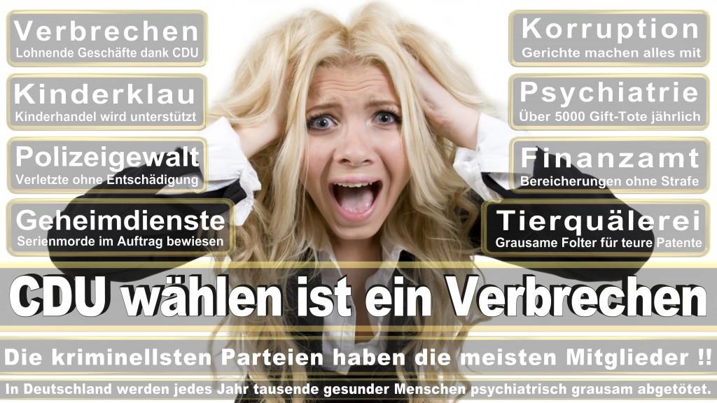 Landtagswahl Baden-Württemberg 2016, CDU, SPD, Landtagswahl Baden-Württemberg 2016,Landtagswahl-Baden-Württemberg-2016 (509) Landtagswahl Baden-Württemberg 2016