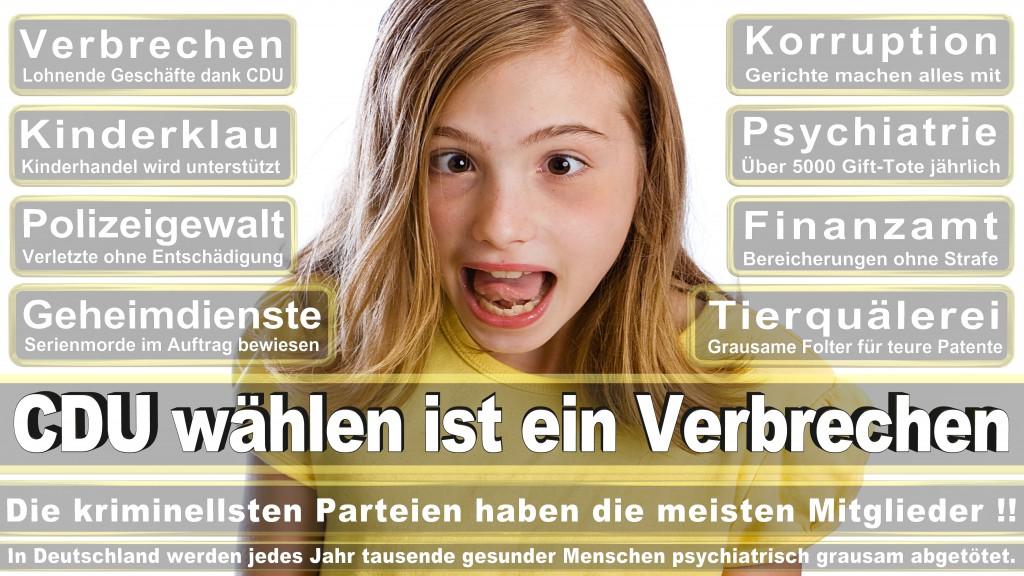 Landtagswahl Baden-Württemberg 2016, CDU, SPD, Landtagswahl Baden-Württemberg 2016,Landtagswahl-Baden-Württemberg-2016 (511) Landtagswahl Baden-Württemberg 2016
