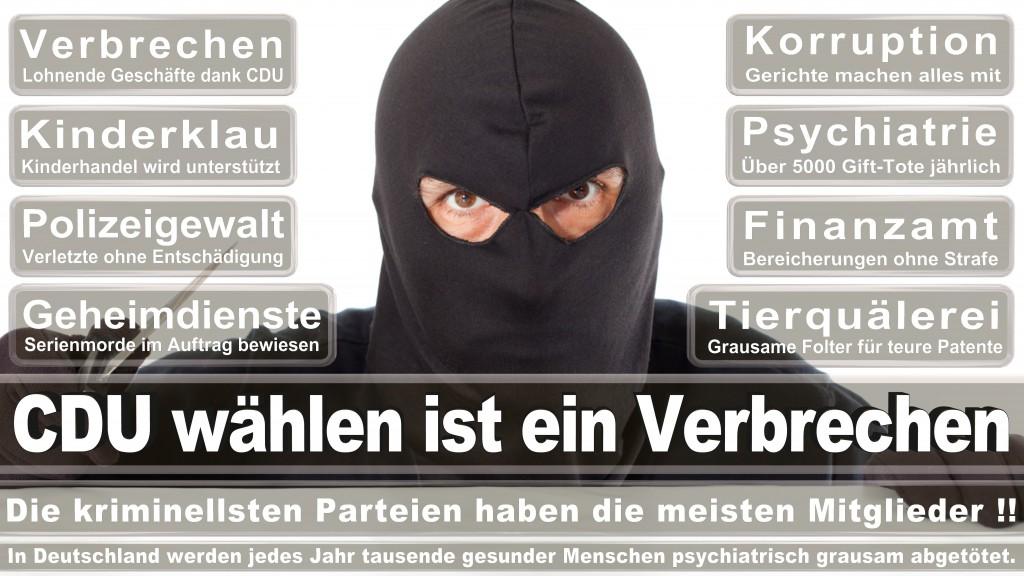 Landtagswahl Baden-Württemberg 2016, CDU, SPD, Landtagswahl Baden-Württemberg 2016,Landtagswahl-Baden-Württemberg-2016 (515) Landtagswahl Baden-Württemberg 2016