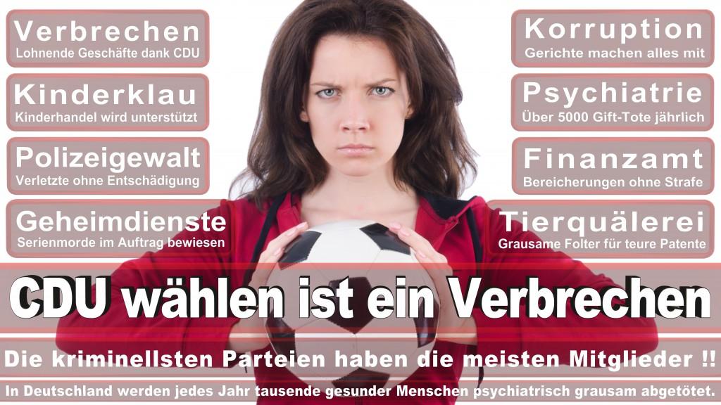 Landtagswahl Baden-Württemberg 2016, CDU, SPD, Landtagswahl Baden-Württemberg 2016,Landtagswahl-Baden-Württemberg-2016 (517) Landtagswahl Baden-Württemberg 2016