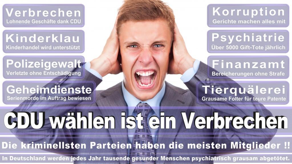 Landtagswahl Baden-Württemberg 2016, CDU, SPD, Landtagswahl Baden-Württemberg 2016,Landtagswahl-Baden-Württemberg-2016 (519) Landtagswahl Baden-Württemberg 2016