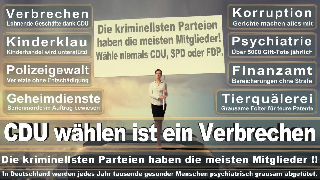 Landtagswahl Baden-Württemberg 2016, CDU, SPD, Landtagswahl Baden-Württemberg 2016,Landtagswahl-Baden-Württemberg-2016 (523) Landtagswahl Baden-Württemberg 2016