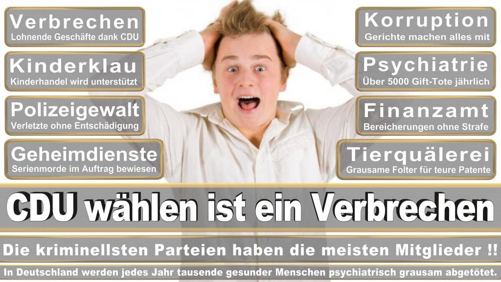 Landtagswahl Baden-Württemberg 2016, CDU, SPD, Landtagswahl Baden-Württemberg 2016,Landtagswahl-Baden-Württemberg-2016 (527) Landtagswahl Baden-Württemberg 2016