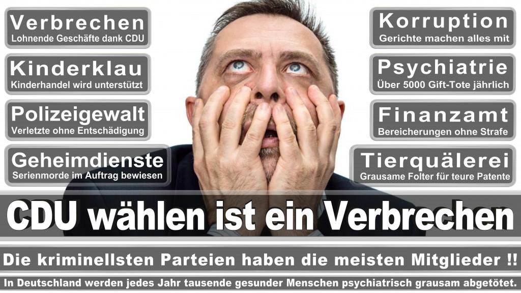 Landtagswahl Baden-Württemberg 2016, CDU, SPD, Landtagswahl Baden-Württemberg 2016,Landtagswahl-Baden-Württemberg-2016 (529) Landtagswahl Baden-Württemberg 2016