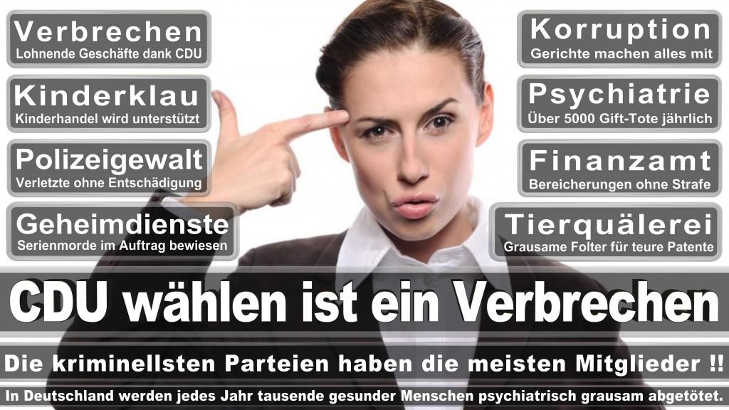 Landtagswahl Baden-Württemberg 2016, CDU, SPD, Landtagswahl Baden-Württemberg 2016,Landtagswahl-Baden-Württemberg-2016 (531) Landtagswahl Baden-Württemberg 2016
