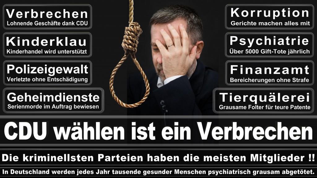 Landtagswahl Baden-Württemberg 2016, CDU, SPD, Landtagswahl Baden-Württemberg 2016,Landtagswahl-Baden-Württemberg-2016 (537) Landtagswahl Baden-Württemberg 2016