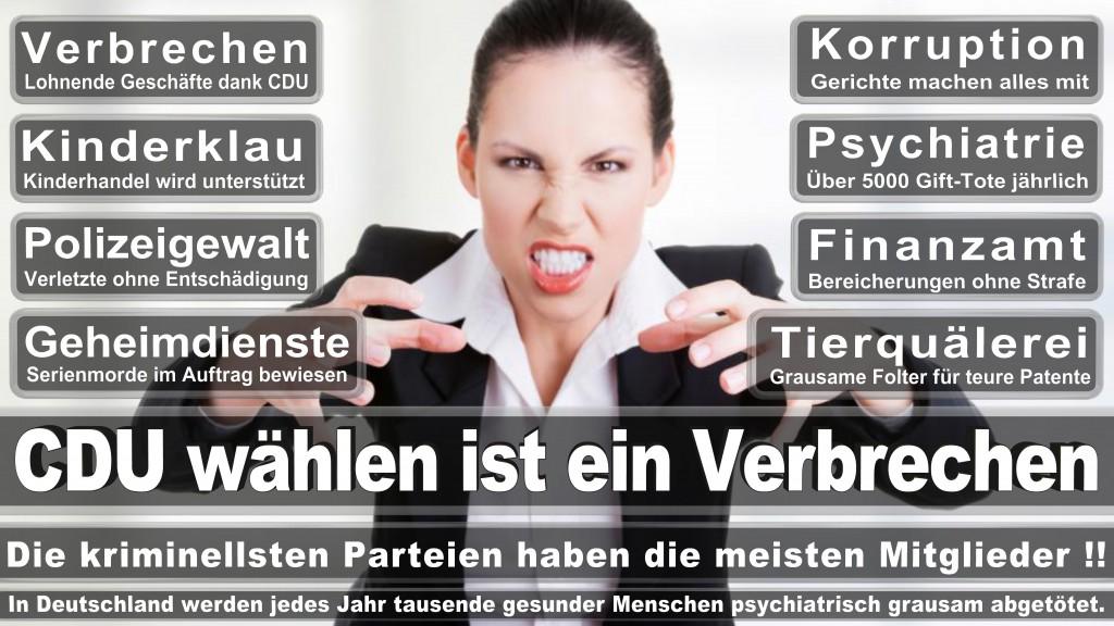 Landtagswahl Baden-Württemberg 2016, CDU, SPD, Landtagswahl Baden-Württemberg 2016,Landtagswahl-Baden-Württemberg-2016 (539) Landtagswahl Baden-Württemberg 2016