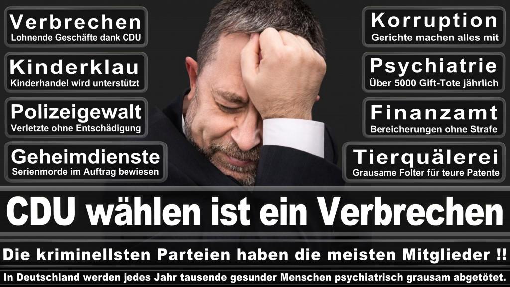Landtagswahl Baden-Württemberg 2016, CDU, SPD, Landtagswahl Baden-Württemberg 2016,Landtagswahl-Baden-Württemberg-2016 (541) Landtagswahl Baden-Württemberg 2016