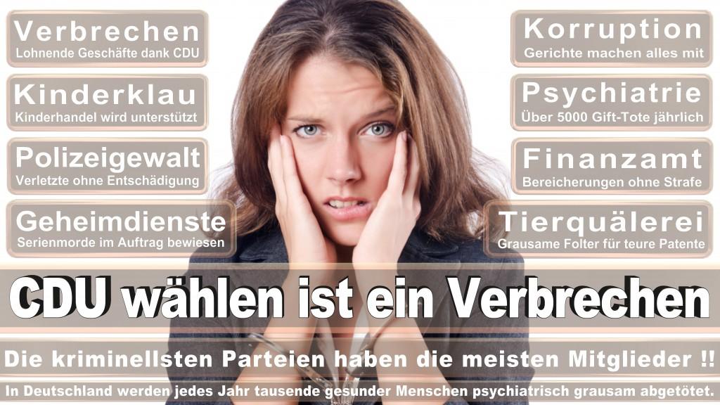 Landtagswahl Baden-Württemberg 2016, CDU, SPD, Landtagswahl Baden-Württemberg 2016,Landtagswahl-Baden-Wuerttemberg-2016 (109) Landtagswahl Baden-Württemberg 2016