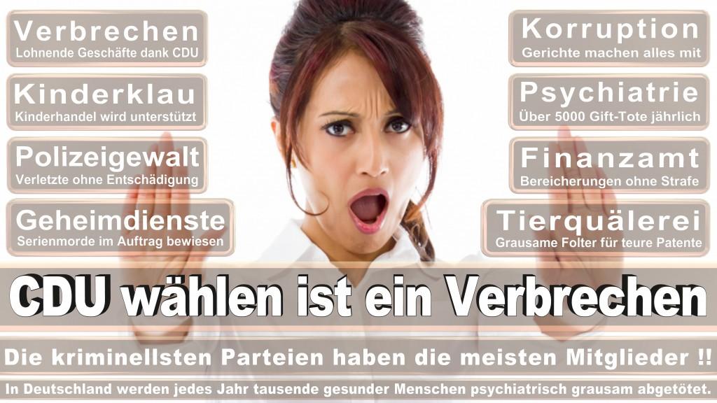 Landtagswahl Baden-Württemberg 2016, CDU, SPD, Landtagswahl Baden-Württemberg 2016,Landtagswahl-Baden-Wuerttemberg-2016 (111) Landtagswahl Baden-Württemberg 2016