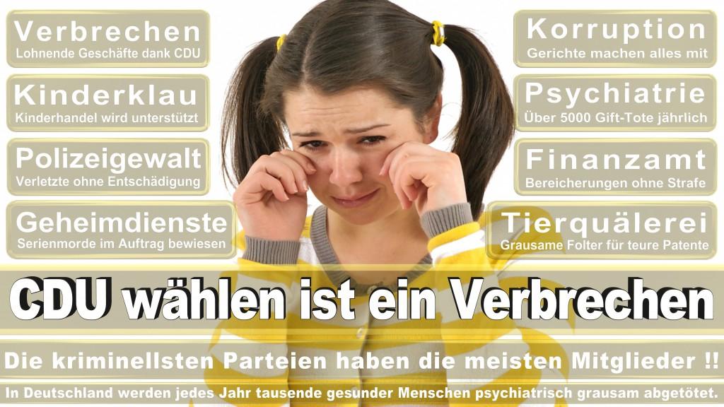 Landtagswahl Baden-Württemberg 2016, CDU, SPD, Landtagswahl Baden-Württemberg 2016,Landtagswahl-Baden-Wuerttemberg-2016 (113) Landtagswahl Baden-Württemberg 2016