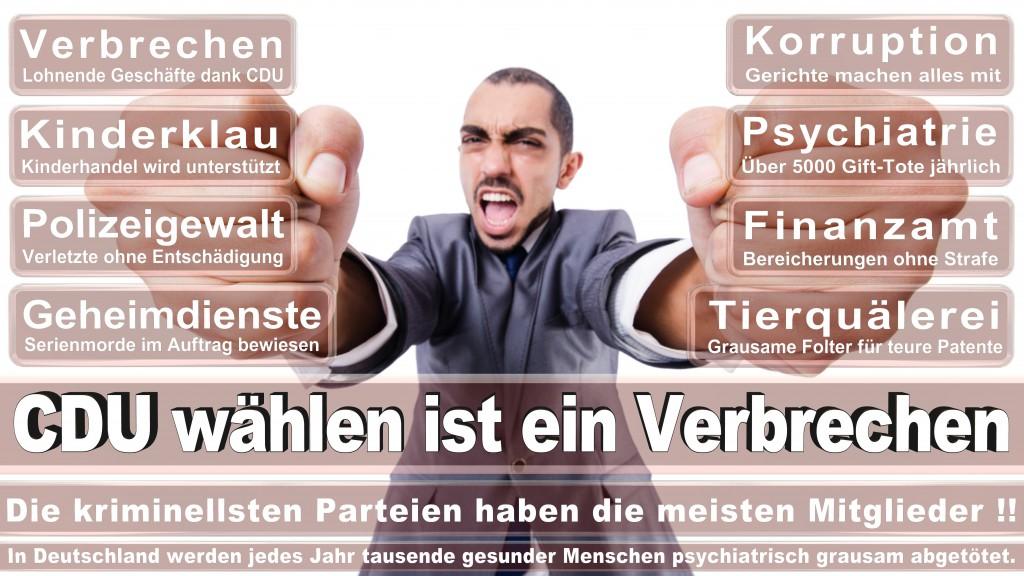 Landtagswahl Baden-Württemberg 2016, CDU, SPD, Landtagswahl Baden-Württemberg 2016,Landtagswahl-Baden-Wuerttemberg-2016 (115) Landtagswahl Baden-Württemberg 2016
