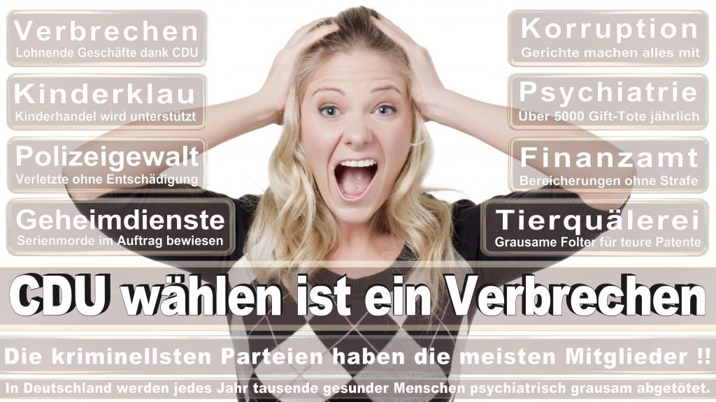 Landtagswahl Baden-Württemberg 2016, CDU, SPD, Landtagswahl Baden-Württemberg 2016,Landtagswahl-Baden-Wuerttemberg-2016 (117) Landtagswahl Baden-Württemberg 2016