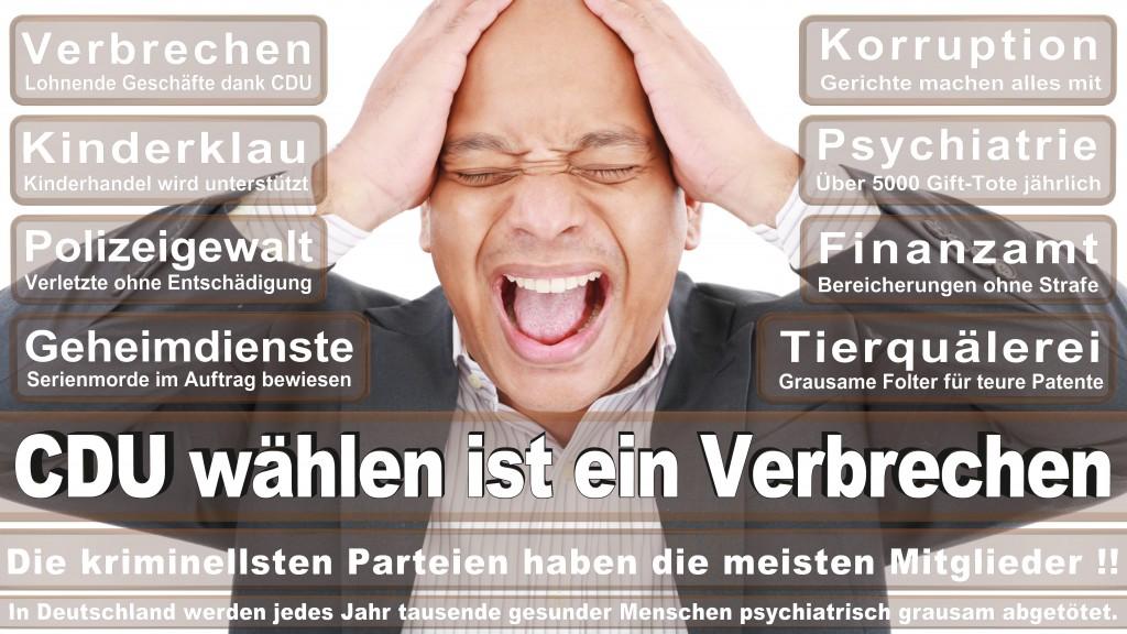 Landtagswahl Baden-Württemberg 2016, CDU, SPD, Landtagswahl Baden-Württemberg 2016,Landtagswahl-Baden-Wuerttemberg-2016 (119) Landtagswahl Baden-Württemberg 2016
