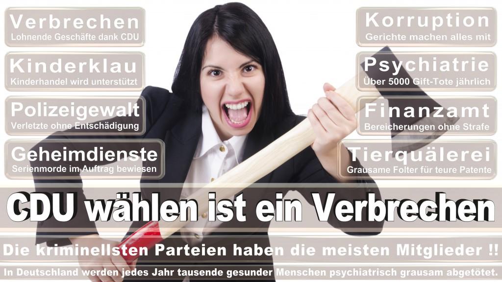 Landtagswahl Baden-Württemberg 2016, CDU, SPD, Landtagswahl Baden-Württemberg 2016,Landtagswahl-Baden-Wuerttemberg-2016 (123) Landtagswahl Baden-Württemberg 2016