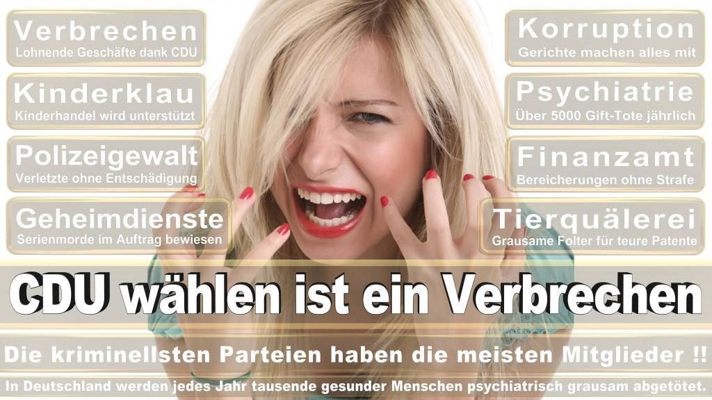 Landtagswahl Baden-Württemberg 2016, CDU, SPD, Landtagswahl Baden-Württemberg 2016,Landtagswahl-Baden-Wuerttemberg-2016 (125) Landtagswahl Baden-Württemberg 2016