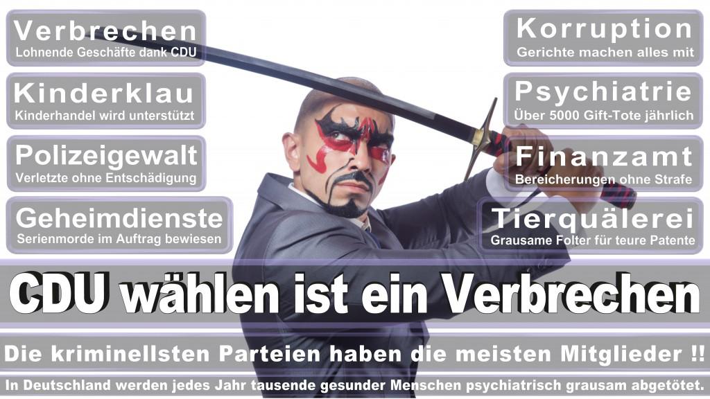 Landtagswahl Baden-Württemberg 2016, CDU, SPD, Landtagswahl Baden-Württemberg 2016,Landtagswahl-Baden-Wuerttemberg-2016 (129) Landtagswahl Baden-Württemberg 2016