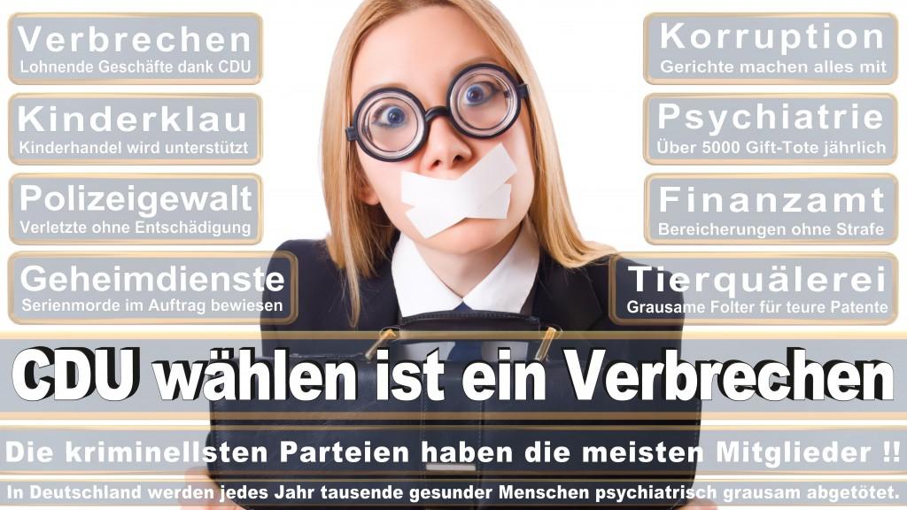 Landtagswahl Baden-Württemberg 2016, CDU, SPD, Landtagswahl Baden-Württemberg 2016,Landtagswahl-Baden-Wuerttemberg-2016 (131) Landtagswahl Baden-Württemberg 2016