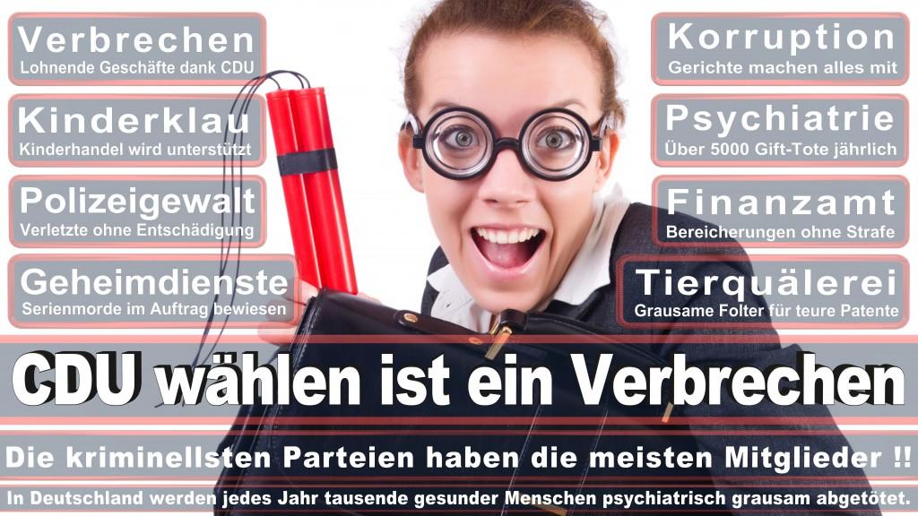 Landtagswahl Baden-Württemberg 2016, CDU, SPD, Landtagswahl Baden-Württemberg 2016,Landtagswahl-Baden-Wuerttemberg-2016 (137) Landtagswahl Baden-Württemberg 2016