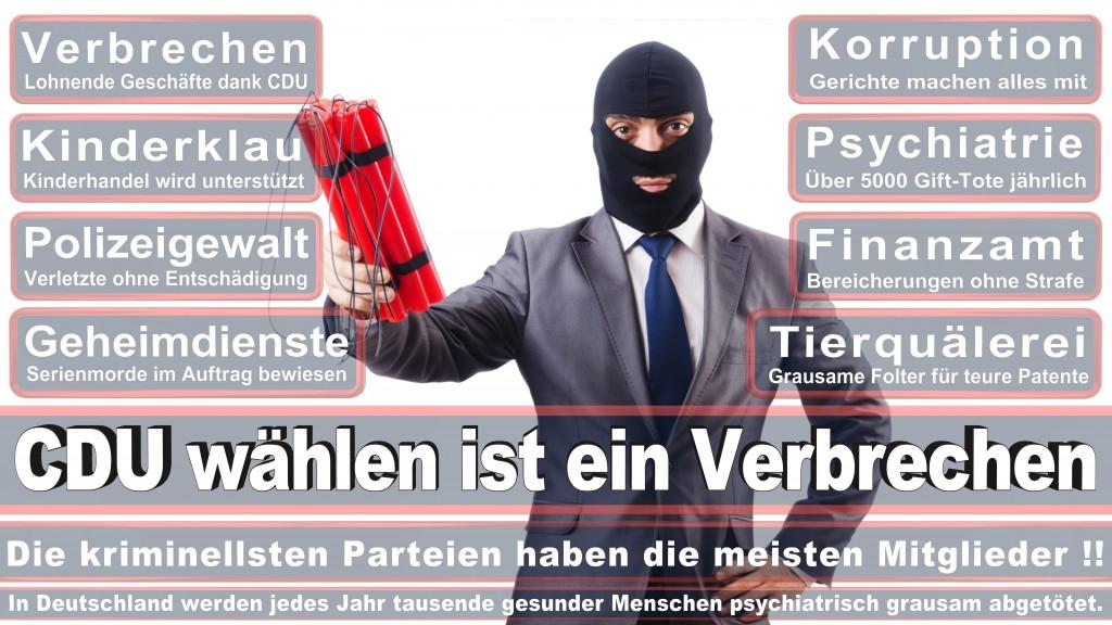 Landtagswahl Baden-Württemberg 2016, CDU, SPD, Landtagswahl Baden-Württemberg 2016,Landtagswahl-Baden-Wuerttemberg-2016 (141) Landtagswahl Baden-Württemberg 2016