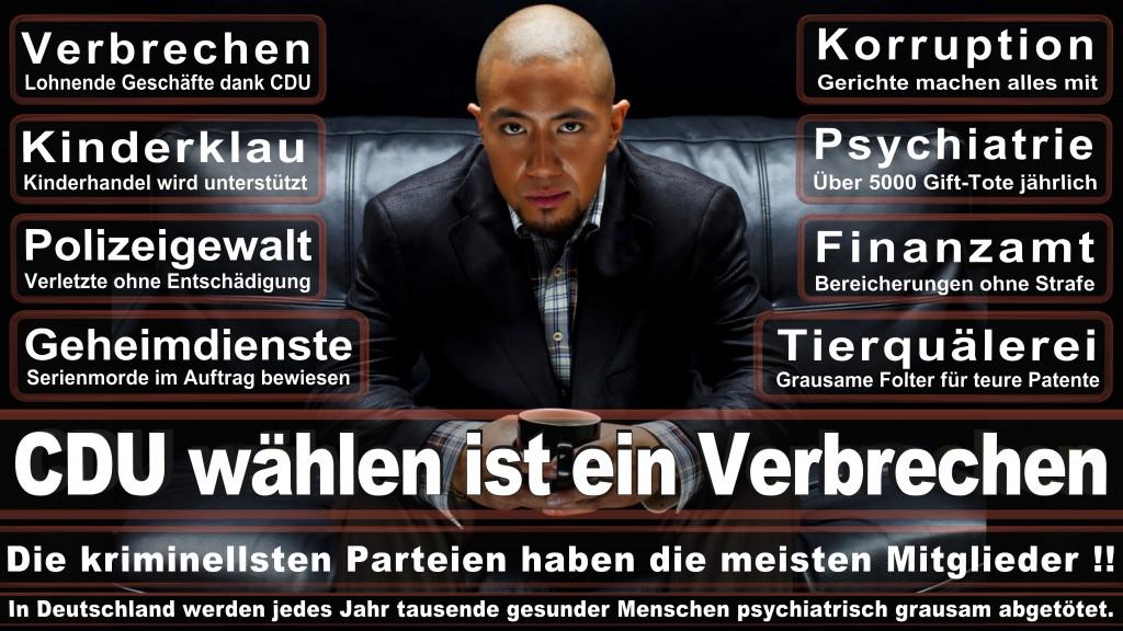 Landtagswahl Baden-Württemberg 2016, CDU, SPD, Landtagswahl Baden-Württemberg 2016,Landtagswahl-Baden-Wuerttemberg-2016 (143) Landtagswahl Baden-Württemberg 2016